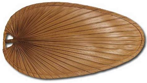 palm tree fan blades pin by newknow ledgebase on decor ideas pinterest