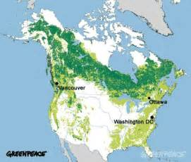 america forest map theplanetfeedsus