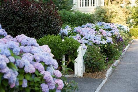 vorgarten gestalten moderne ideen f 252 r vorgartengestaltung