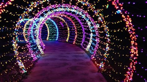 Garden Of Lights Green Bay wps garden of lights has new features this year news