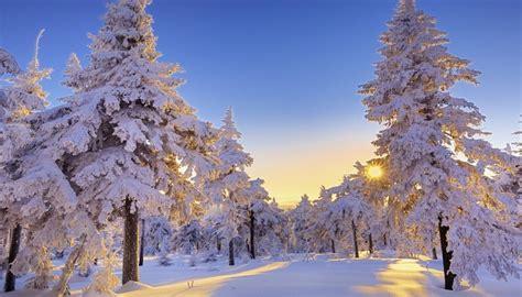 disfruta de estas fotos de paisajes nevados de navidad