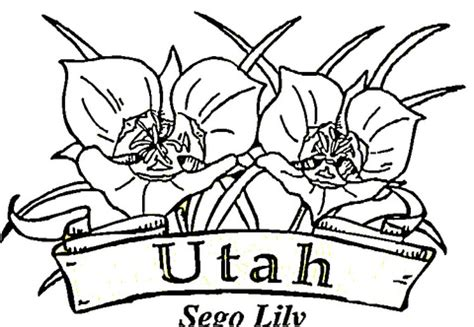 flowers of utah coloring page supercoloring com