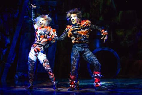 cats musical cats the musical melbourne premiere my poppet living