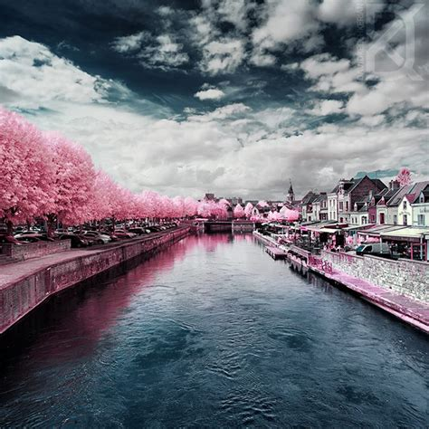 beautiful infrared imagery    pause  stare