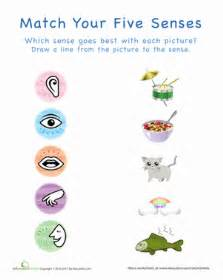 your five senses matching 1 worksheet education com