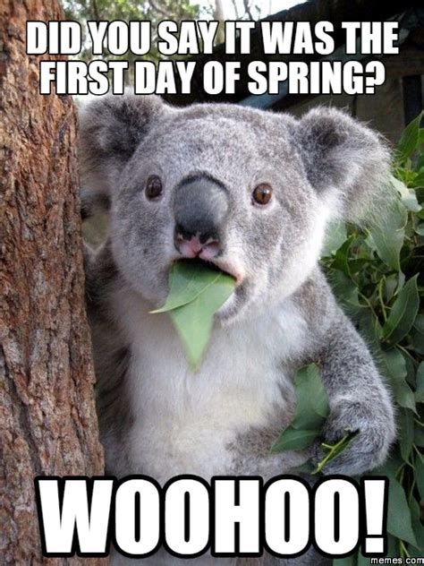 First Day Of Spring Meme - when is the first day of spring bi double you