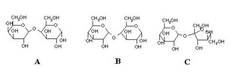 chapter 4 carbohydrates quiz chapter 7 carbohydrates structure and biological function