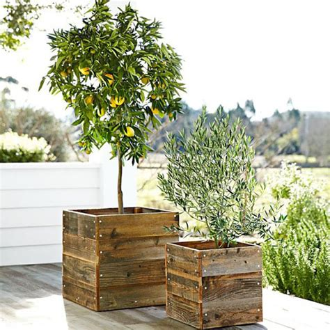 ideas for planters planter ideas