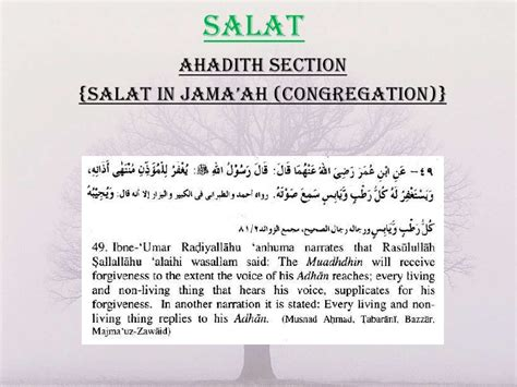 aha section 8 reading ahadith class 19 ppt