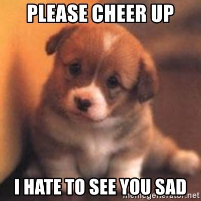 cheer up puppy cheer up i to see you sad puppy meme generator