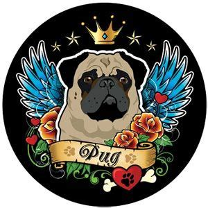 pug rescue rochester ny 17 best ideas about pug rescue on pug puppies pug costumes and pug