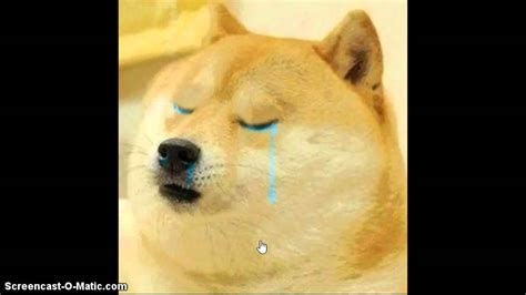 Is Sad by Doge Is Sad