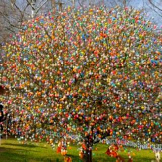 trees in germany easter egg tree in germany dreams of