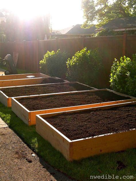best vegetables to grow in raised beds lawn raised planter beds and growing vegetables on pinterest