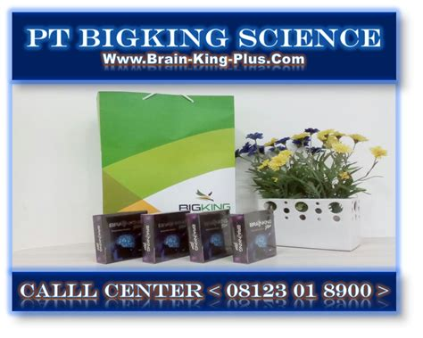 Brainking Plus Untuk Stroke manfaat brainking plus untuk semua penyakit pt bigking