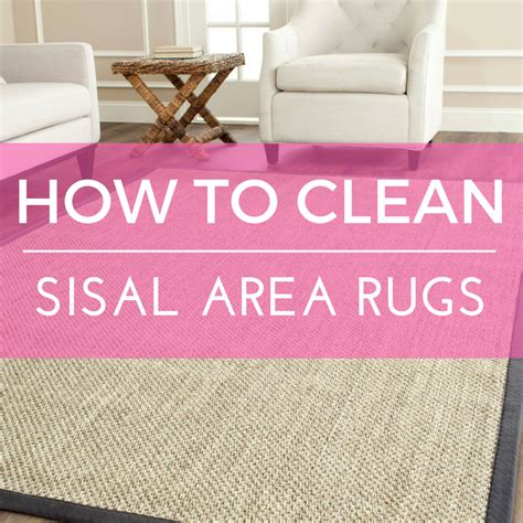 How To Clean Throw Rugs by How To Clean A Sisal Rug Roselawnlutheran