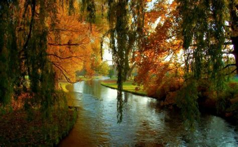 peaceful river rivers nature background wallpapers