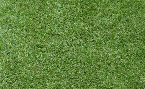 santa anna couch adelaide synthetic grass adelaide types of synthetic grass supplied