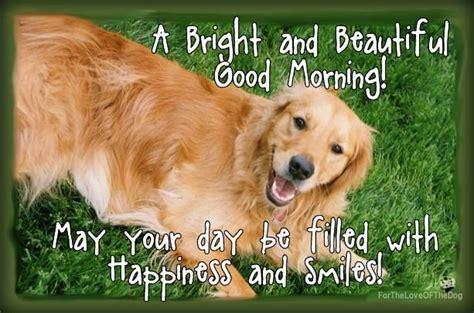 by good morning golden retriever good morning to all golden love pinterest