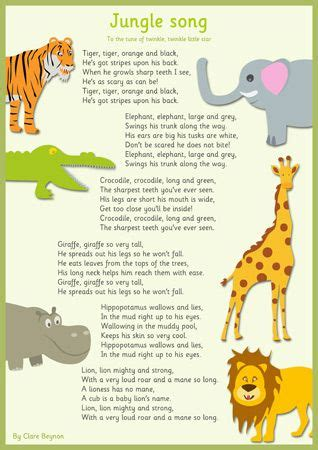 theme music to zoo time best 20 zoo animals ideas on pinterest baby zoo animals