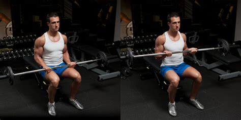 seated barbell curl workout with dumbbells back shoulder