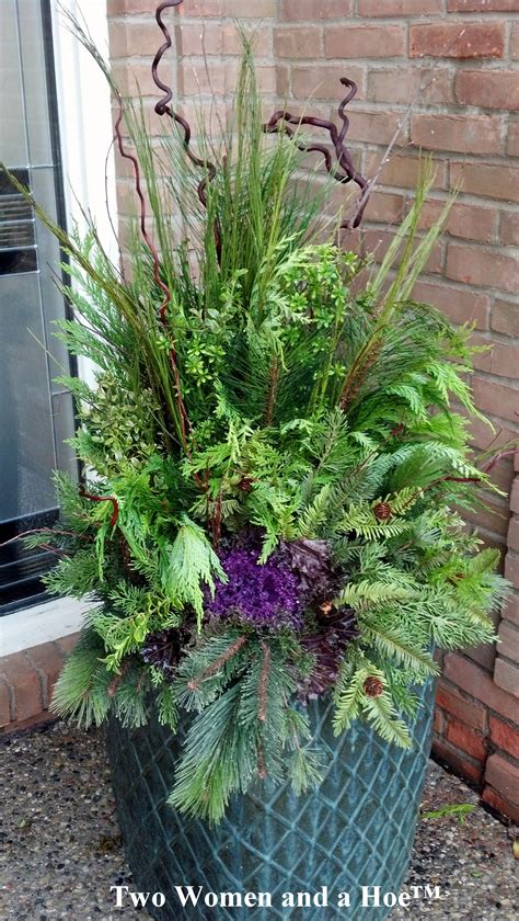 container gardening winter winter containers on winter container