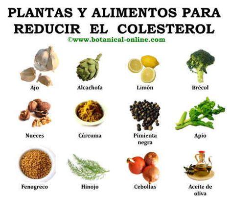 plantas medicinales remedios caseros medicina natural remedios naturales y plantas para el colesterol hierbas