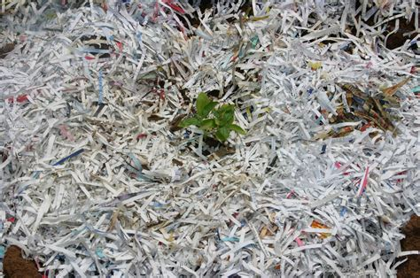 How To Make Paper Mulch - johns creek offers free shredding grease recycling www