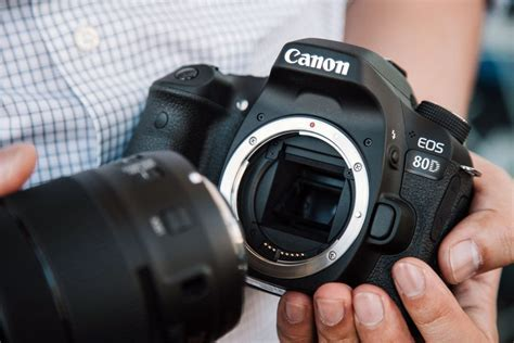 Best Canon 80D Lenses for Any Type of Photography   2019 Guide