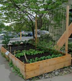 make a trellis how to make a pea trellis apps directories