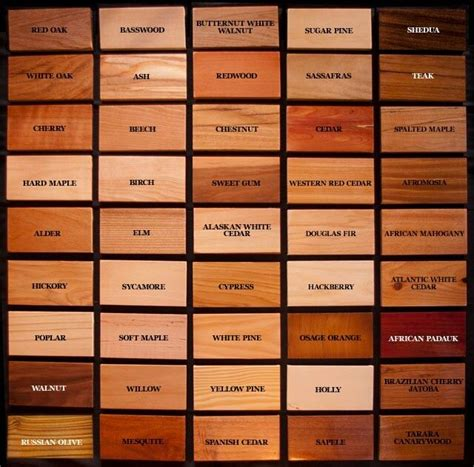 what different types of wood are needed for cabinets floors and roofs wood type and wood species infographic here is a fascinating comparison of wood type which