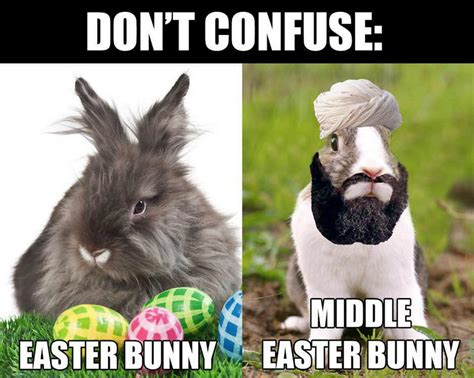 Chocolate Easter Bunny Meme - funny easter bunny memes memeologist com
