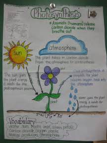the charts the lives and lessons of american child prodigies best 25 photosynthesis activities ideas on