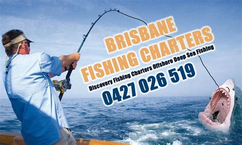 fishing boat charter cost shark fishing gold coast charters gold coast fishing