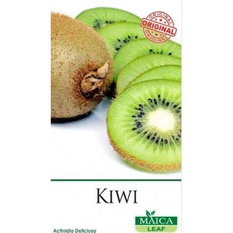 Bibit Buah Kiwi Dataran Rendah jual benih kiwi