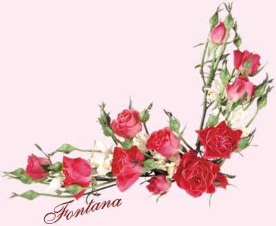 la pluma rota manuel chaves nogales a sangre poemas en el recuerdo por fontana soneto de la guirnalda de rosas