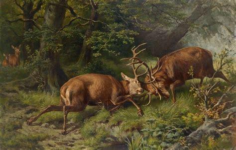Battling Big Bucks by Wallpaper Battle Deer Franz Xaver Pausinger Images