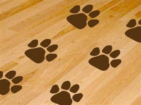 dog print wallpaper dog paws print wallpaper floor your dream home