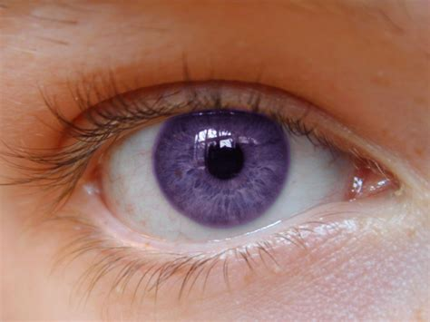 eye color eye color