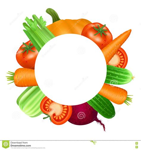 Lulur Wajah Organik Carrot And Tomato frame of vegetables tomato carrot cucumber celery and beets stock vector image 71125108