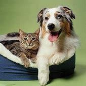 ingrosso alimenti per cani tarini snc alimenti per animali ascom pesaro