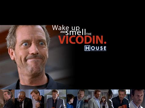 music in house md if i take a vicodin will it help the tattoo pain page 2 rapmusic com