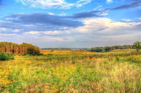 Prairie Gardens Chaign Il by Chain Hd Free Stock Photos 2 641 Free Stock