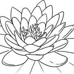 Lotus Flower Color Lotus Flower Coloring Pages