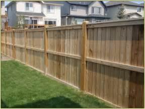 Backyard Fence Ideas Pictures Backyard Fencing Ideas Home Design Ideas