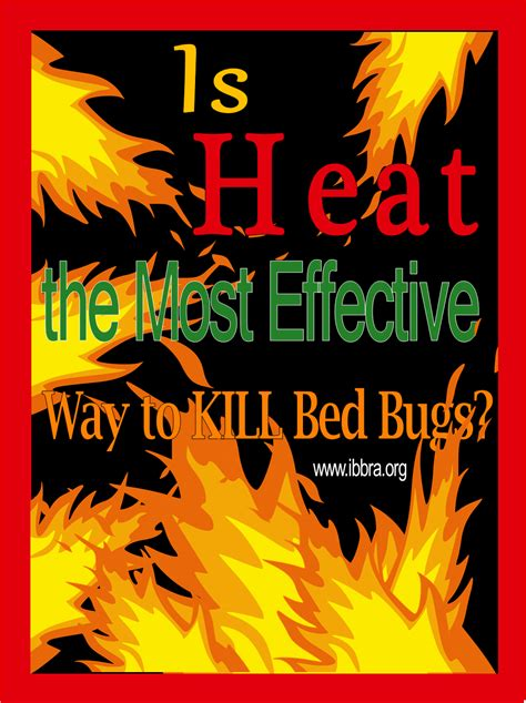 get rid of bed bugs for good heat 2 how to get rid of bed bugs for good getting rid