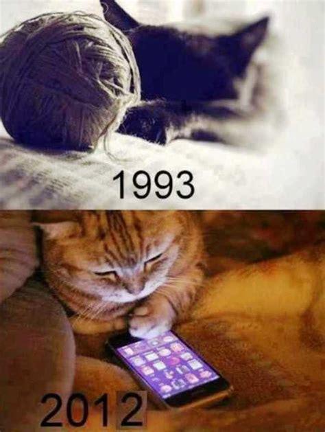 perbedaan kucing tahun 1993 dan 2012 gambar lucu