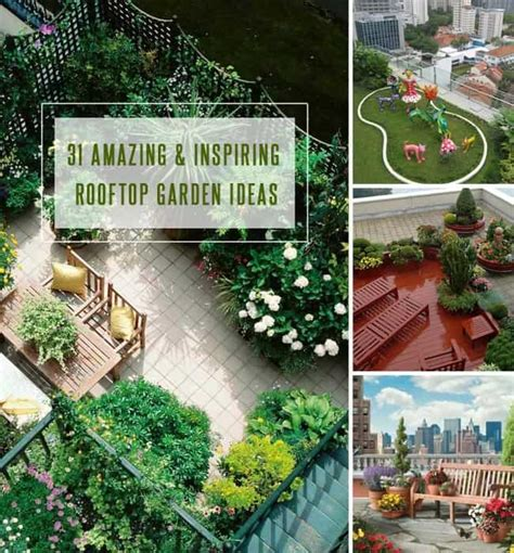 Rooftop Gardening Ideas 31 Amazing And Inspiring Rooftop Garden Ideas Gardenoid