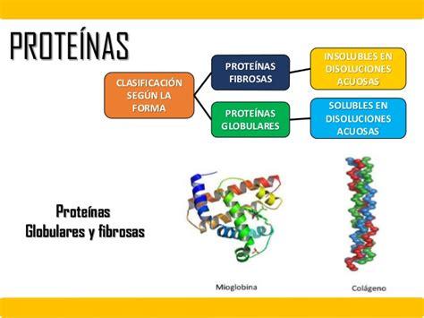 proteina y quimica de proteinas