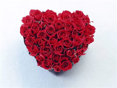 roses and hearts made with roses desicomments